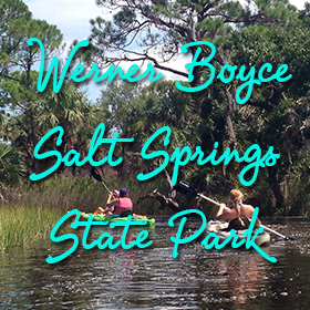 Bayou Business Association Werner Boyce Salt Springs State Park