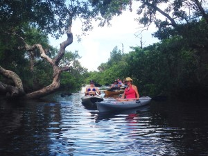 Gill Dawg Port Richey Bayou Business Association Tourism Visit Florida