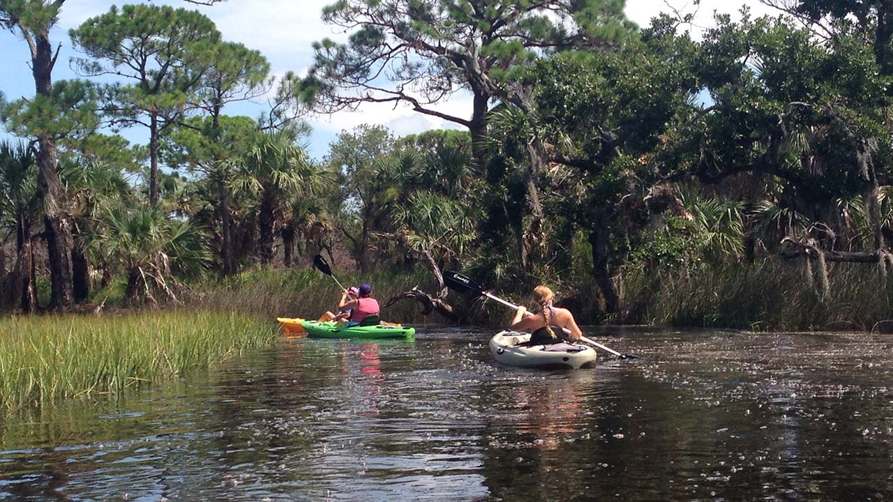 werner boyce tour gill dawg port richey florida kayak trip rental 4